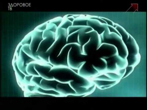 Познай себя. Мозг