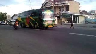 Arjuna Samba Bus