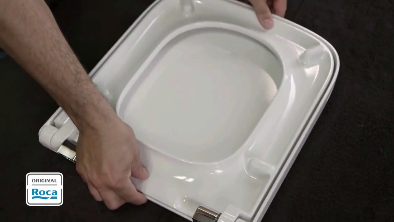 Replace Toilet Seat
