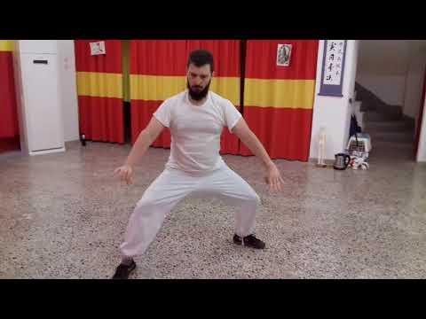 "Athanasios Alexatos Chen Style Taiji Quan""Practical method"" YiLu Greece 2017"