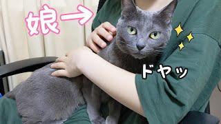 大好きな娘には自分から抱っこされに行く貴重なデレ猫ハムちゃん
