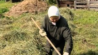 Уральская тайга: деревня Линты.mpg