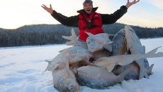 КАК ОНИ ДАВЯТ !!! РЫБАЛКА просто  ОГОНЬ !!! ДУШИМ Леща! Зимняя рыбалка