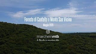 Foresta di Canfaito e Monte San Vicino
