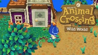 Animal Crossing Wild World Gameplay
