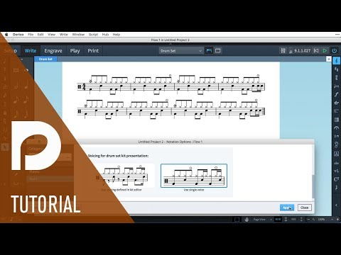 Percussion | New Features in Dorico 1.2