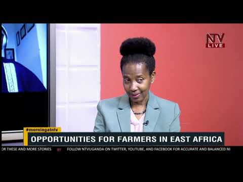 KICK STARTER: Opportunities for farmers in East Africa during lockdown