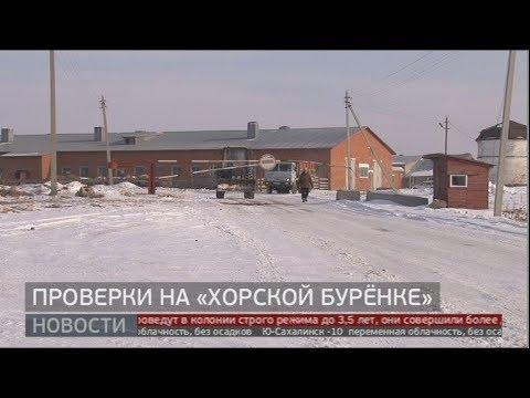 Проверки на «Хорской бурёнке». Новости. 24/01/2020. GuberniaTV