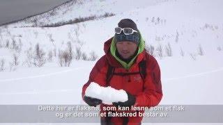 Varsom.no - Hva menes med bundet snø? (flaksnø/flakskred)