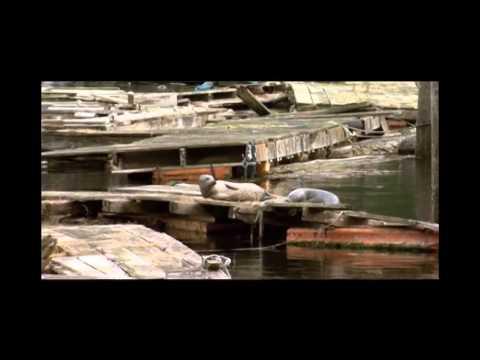 Coastal Cruising Television: Boat show Grand Banks-Sea Ray