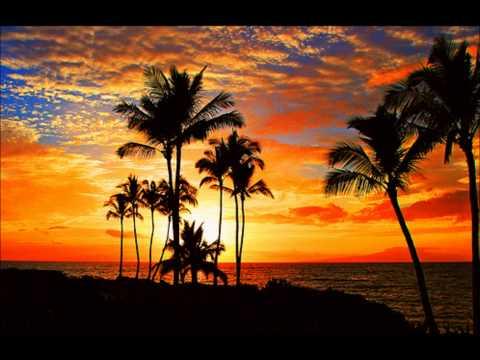 Hawaiian Instrumental