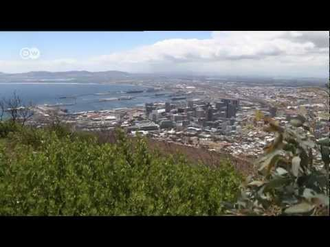 Cape Town's compost helps farmers   Global Ideas