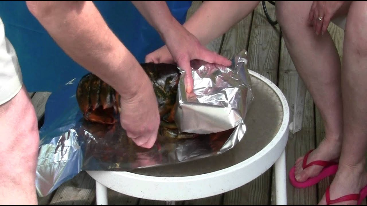 How to Cook a 6LB Maine Lobster Here in New England - YouTube