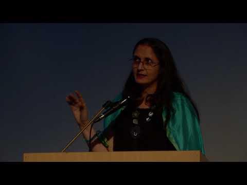 DAS 2018 Symposium: The Sunwise Turn, Nancy Adajania