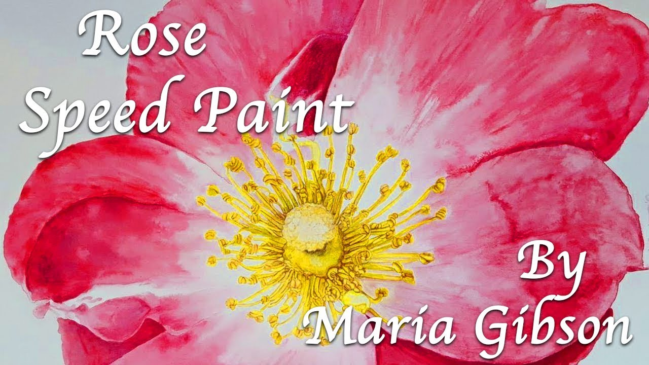 Rose Speed Paint by Maria Gibson