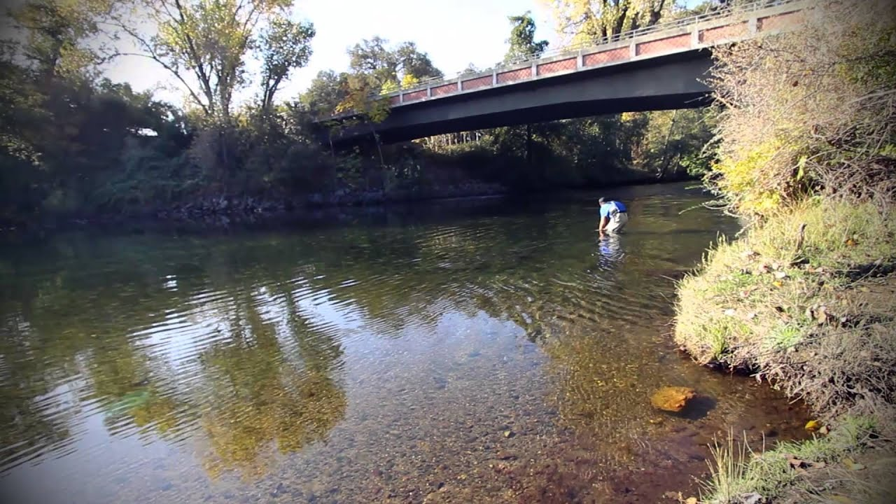 2014 stanislaus river salmon festival youtube for Stanislaus river fishing