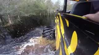 Wild Florida & Monster Truck Safari