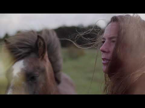 Josefine Cronholm - HORSES