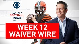 NFL WAIVER WIRE Targets, Week 12 Picks | 2019 Fantasy Football Advice | Fantasy Football Today