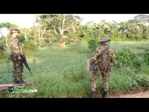14 militares muertos en flor amarillo tame 2013