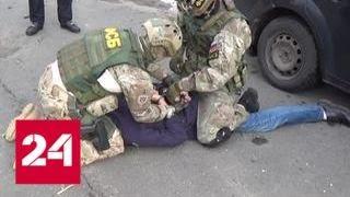 Смотреть видео ФСБ задержала банду оружейников, изготовившую 36 самодельных бомб - Россия 24 онлайн