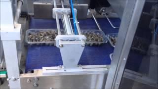 Запайщик лотков Yang Polaris Vac Skin скин-упаковка моллюсков(, 2014-07-24T18:24:00.000Z)