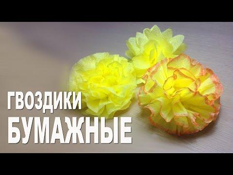 Цветы из бумаги. Гвоздика
