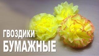 Цветы из бумаги. Гвоздика(Цветы из бумаги это всегда красивый декор для дома или элегантное украшение к вашему подарку. В моем виде..., 2015-02-08T20:20:52.000Z)