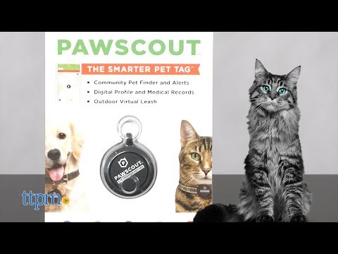 Pawscout The Smarter Pet Tag from Worldwise