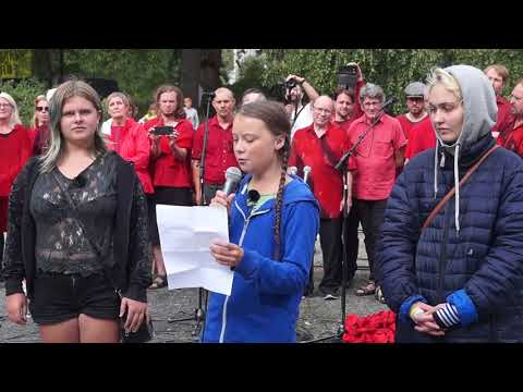 Greta Thunberg at People's Climate March Sweden 2018