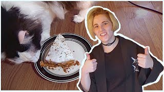 A Whole Video With My Cats - Making Cat Cake