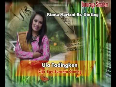 Ula tadingken (Rimta mariani Br Ginting)