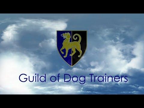 PET GUNDOG TRAINING PART 1  Lez Graham GODT TV