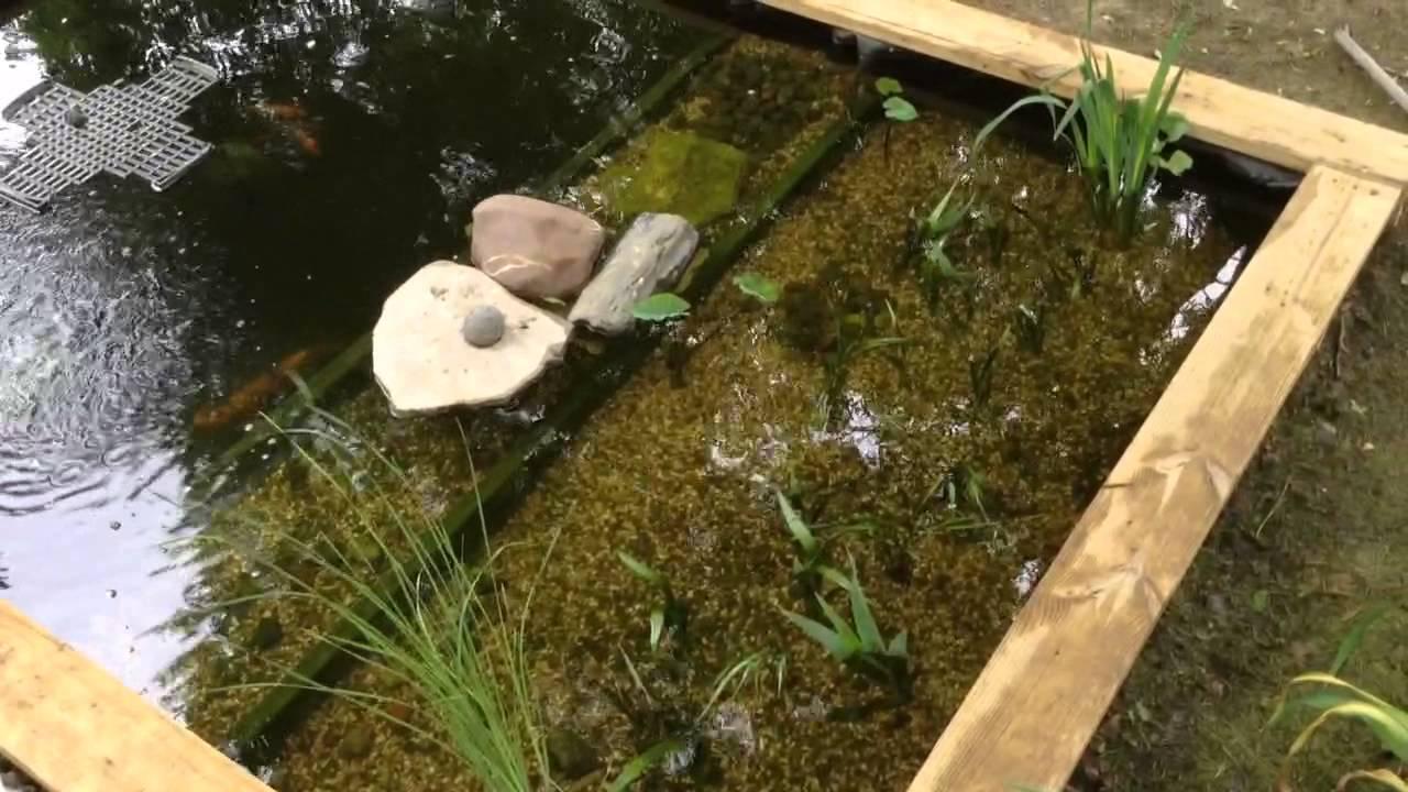 Best koi pond design take 2 youtube for Best pond design