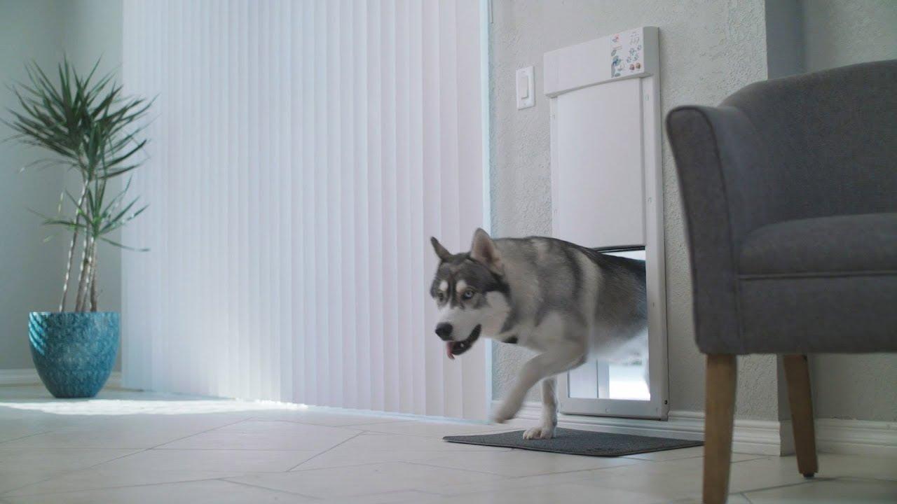 power pet doors