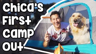 Chica's First Camping Trip thumbnail