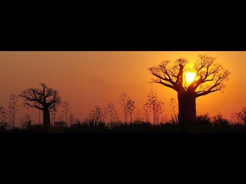 Rana Rani - Sepondok Dua Cinta