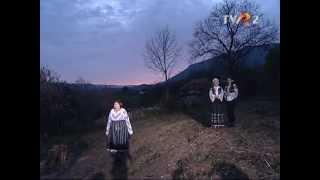 Domnica Trop - Sara cand rasare luna