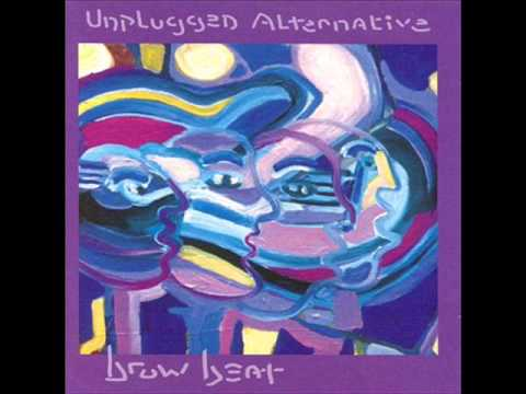 Terry Scott Taylor - 4 - Will Have To Do For Now - Brow Beat - Unplugged Alternative (1993)