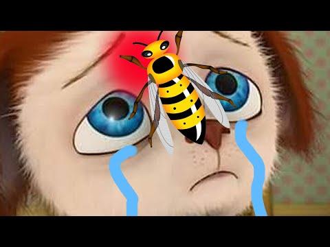 Пчёлка напала на Малыша. Барбоскины - 1 серия. Мультфильм для детей.
