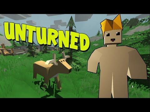 how to join unturned friends server