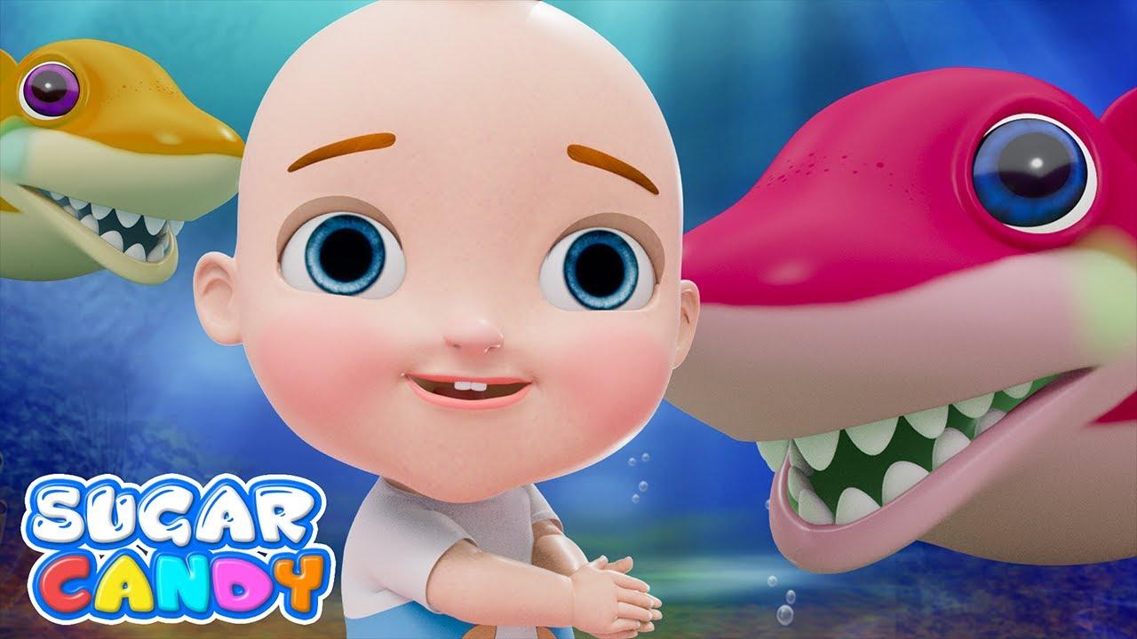 Baby Shark Song   SugarCandy - Nursery Rhymes And Kids Songs