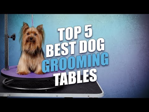 Top 5 Best Dog Grooming Tables