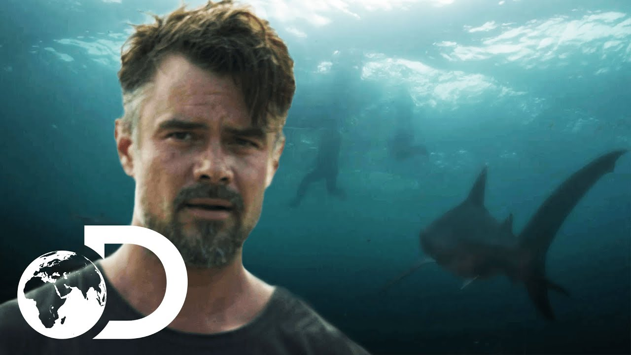 Watch Streaming CAPSIZED: BLOOD IN THE WATER .2019 Movie Video Full Josh Duhamel