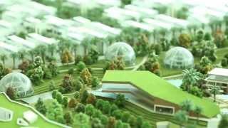 The Sustainable City thumbnail