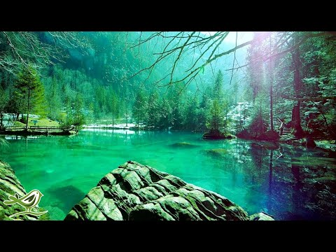 12 Hours of Relaxing Sleep Music for Stress Relief, Sleeping & Meditation (Flying)