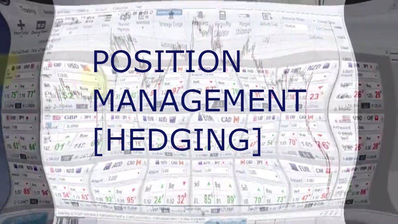 Professional Traders Position Management in Forex Trading - Hedging, portfolio and money management