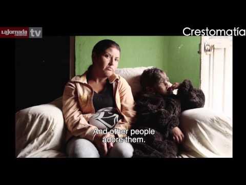 La Otra Pantalla - [Grandes Héroes/Chuy El Hombre Lobo/La Vida de los Otros]Programa 37.