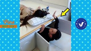 Funny Videos 2019 ● People doing stupid things P10
