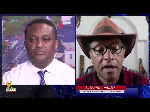 ESAT 60 Mesay with Prof.  Alemayehu G.Mariyam on Ethiopian Diaspora trust fund Dec 2018